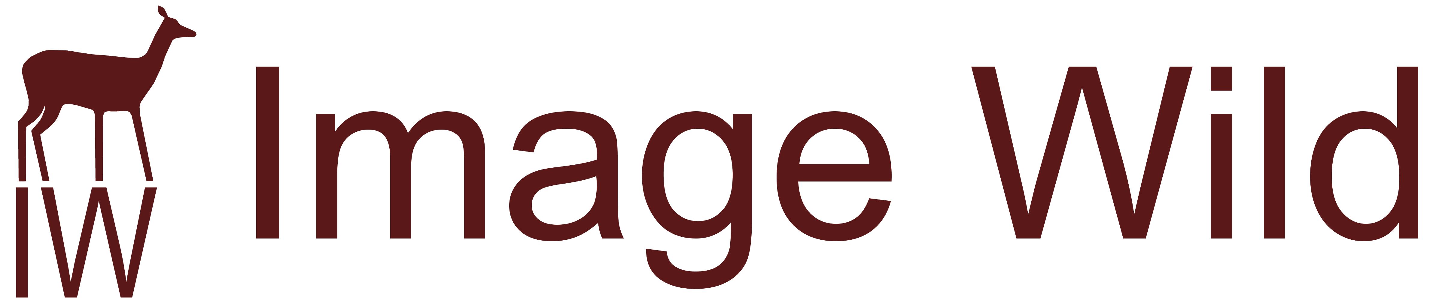 Image Wild