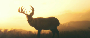 Arthur Morgan's spirit animal, a white-tailed deer, from the video game Red Dead Redemption 2.