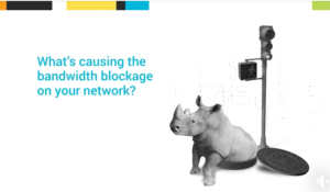 An ad for Solarwinds featuring a white rhinoceros emerging from a network portal.
